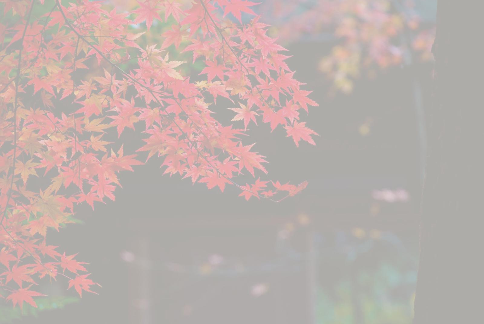 御栗菓子【松月堂】 | プライバシーポリシー